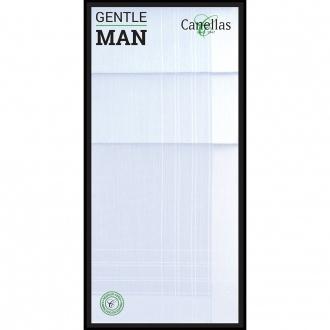 pañuelos hombre