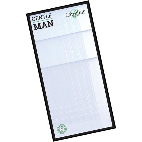 pañuelo de bolsillo hombre